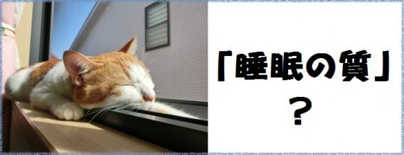 睡眠の質?